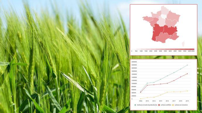 Retrouvez en infographies les chiffres clé de l'évolution de l'agriculture biologique en France en 2019