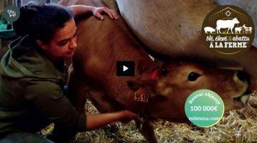 L'abattage à la ferme: un projet qui engage, des éleveurs aux consommateurs