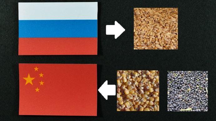 drapeaux russe et chinois grains de ble mais soja