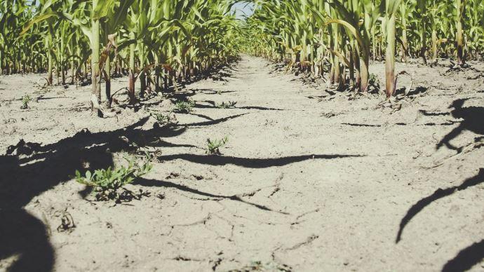Face à l'aggravation de la sécheresse, le ministre a annoncé le 17 septembre de nouvelles mesures