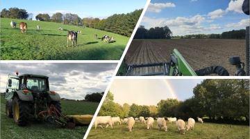 Pâturage, fauche, semis... les éleveurs profitent d'une fenêtremétéo favorable