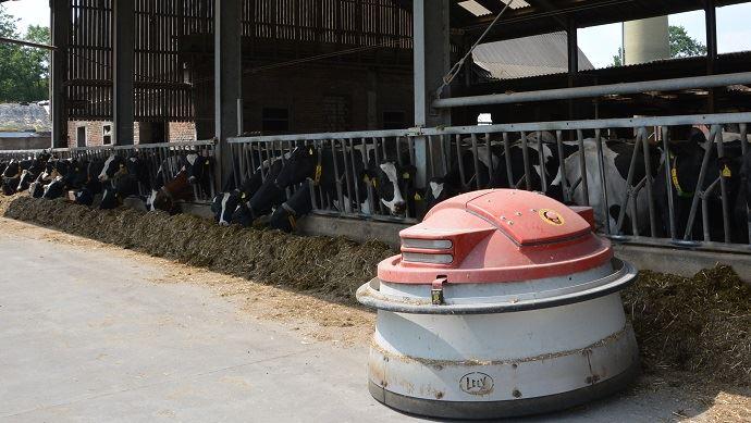 Robot repousse fourrage Juno de Lely pour vaches laitières