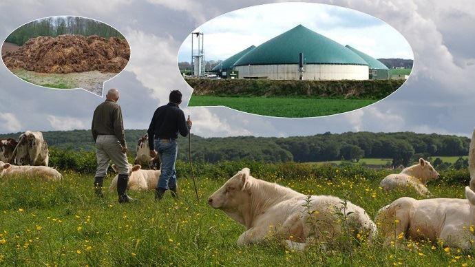 Réflexion au projet de méthanisation agricole pour valoriser les effluents d'élevage