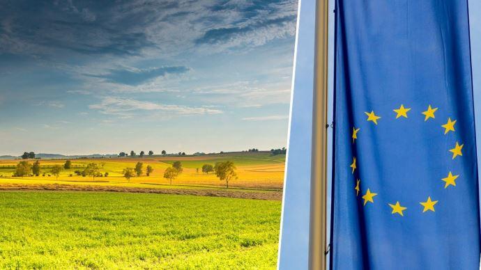 Le conseil et le Parlement de l'UE ont adopté, la semaine dernière, leur position respective sur la nouvelle Pac.
