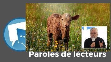 Une technocratie agricole certainement moins durable que l'élevage!