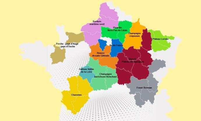 Carte de France des adventices du colza.