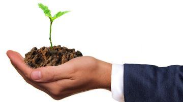 Quelles perspectives de financement pour le carbone stocké par l'agriculture?