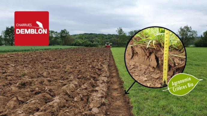Les charrues mixtes Demblon séduisent aussi l'agroécologie de par leur travail superficiel et bénéfique pour les cultures suivantes.