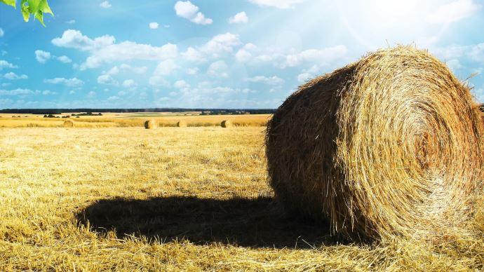 Initiée par Jean-Bernard Sempastous, la proposition de loi pour mieux réguler le foncier agricole va être examinée cette semaine par l'Assemblée nationale.