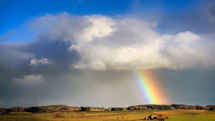 Les cultures européennes profitent de belles améliorations climatiques