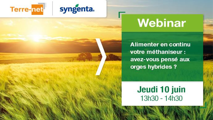 Inscription au webinaire Syngenta sur les orges hybrides