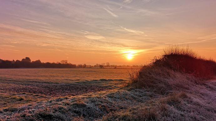 champs gel levé de soleil