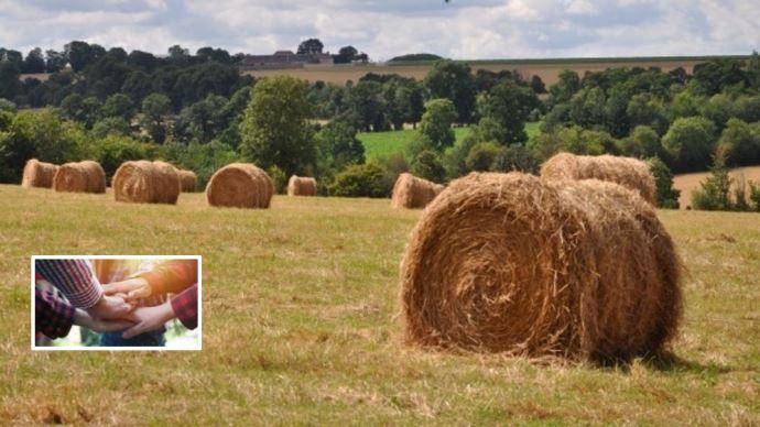 echanges de parcelles pour faciliter transmission de foncier agricole