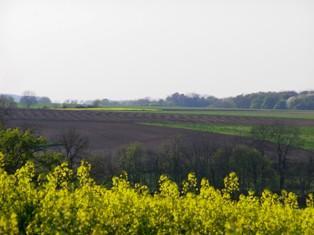 Premier bilan du bail cessible et fonds agricole