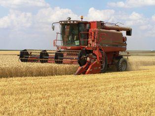 Un potentiel de production de 900 millions de tonnes de céréales ?
