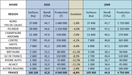 La production française de pommes de terre de conservation pénalisée par les rendements