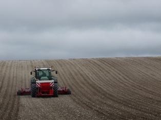Point sur la situation des blés aux Etats-Unis