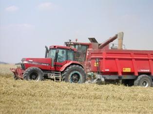 Maïs, blé et soja repartent en hausse