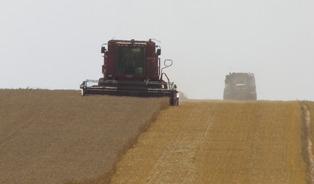 Le marché agricole chute, surpris par un rapport de l'Usda