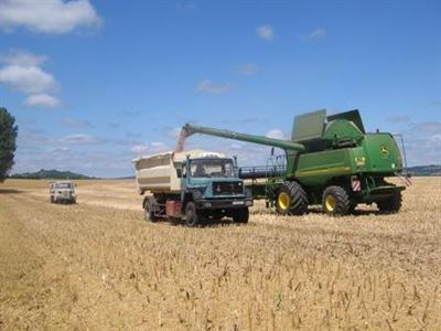 Maïs et blé résistent à la baisse des marchés