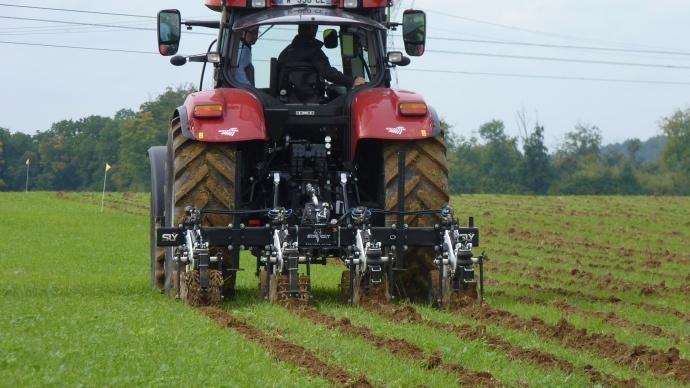 Un compromis entre labour et semis direct ?
