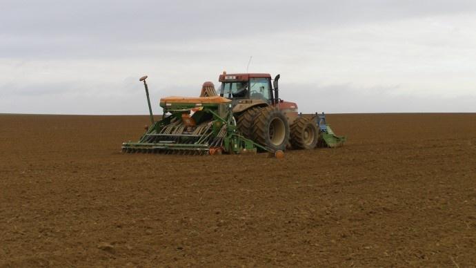 Des conditions optimales pour les semis de blé en Argentine