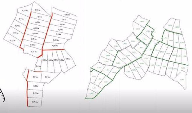 Plan de pâturage en paddocks